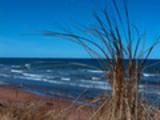 Thumbnail Day At The Beach 2